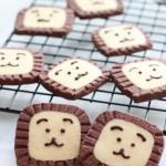 狮子饼干#九阳#