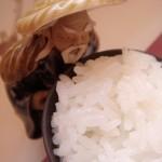 小白学做饭|你真的会煮米饭吗?