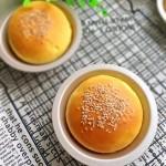 汉堡胚(一次发酵)