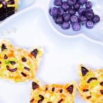 杂蔬鳕鱼猫饭团