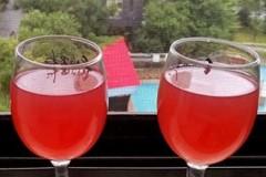 发酵型杨梅酒