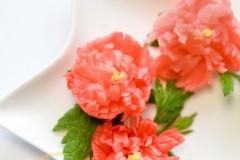 芍药樱桃萝卜