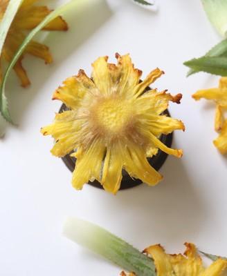 菠萝干果花