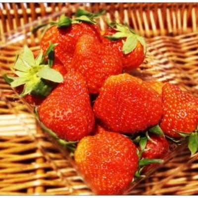 带你去看看喝牛奶长大的美莓(还有一些可以生吃的火腿知识)