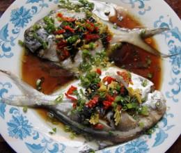渔业古谚语好吃排第三——榄菜蒸鲳鱼