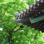 【潭柘寺】游北京最古老的古寺吃最农家的饭菜