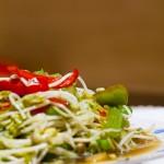 无公害绿豆芽是如何长成的·自己动手发绿豆芽·炒绿豆芽