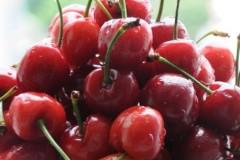 六月----用美丽的水果做个当季的蛋糕(33副过程图)