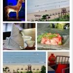 【三亚的绿色健康之旅】在海浪与歌声的陪伴下享用晚餐