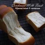 推薦一款可以成為經典的面包配方,煉奶吐司