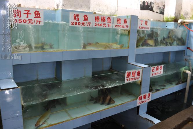 【河水活鱼】吃鱼,关键是要找对码头!