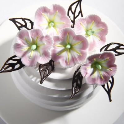 手把手教你做最有春天气息的蛋糕——春日使者