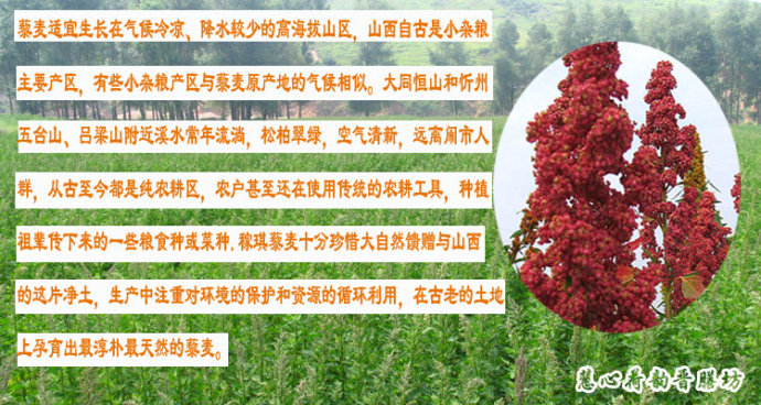 【感恩汤方】美食降糖季:送给糖尿病妈妈的全藕条菜谱图片