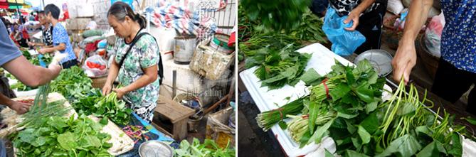 【涠洲岛。食记】涠洲岛,白菜价儿吃海鲜!