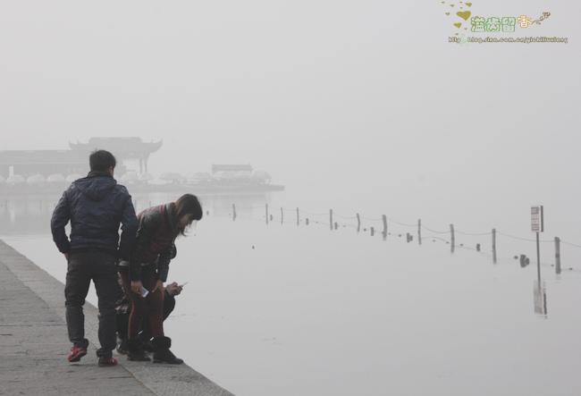 防雾霾的清肺润喉汤-------罗汉果荸荠汤
