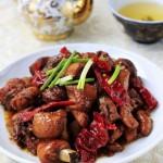 #百家千宴#新疆—家的味道红烧鸡