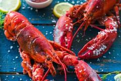 盐焗大龙虾--识别龙虾方法
