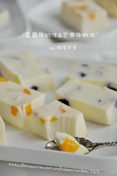 【蓝莓牛奶冻&芒果牛奶冻】