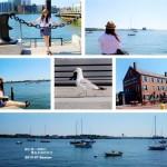 美国(二十)波士顿:去世界最好的学府看看高智商的人们——料足味美的波士顿龙虾卷