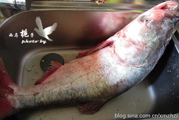 鱼丸Q弹香滑,汤汁鲜美极致的--清水鱼丸