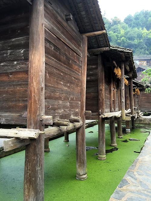 #越吃越FIT#四天三夜贵州山野美食之旅(美食游记)