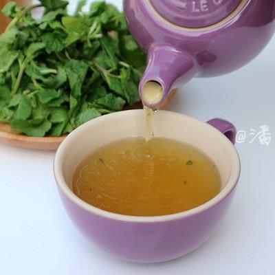 摩洛哥薄荷茶竟然这么好泡