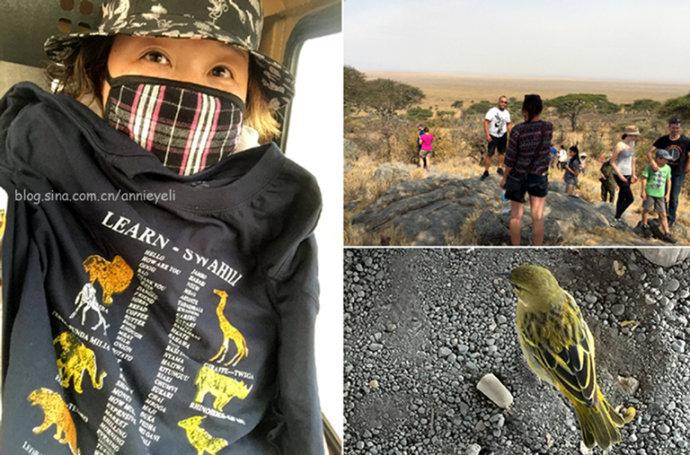 徘徊奥杜威峡谷:人类能人在这里