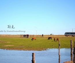 #新浪地标美食之旅#北纬49度,纯净富饶的边疆小镇
