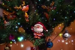 圣诞老人饼干