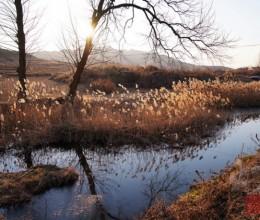 【威海文登】——萧瑟的冬别样的美