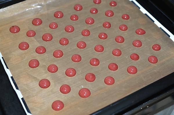 红曲波点蛋糕卷