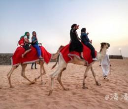 【迪拜】推荐五项旅行体验,感受不一样沙漠帝国