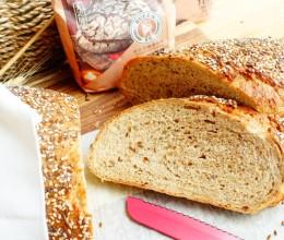 全麦loaf面包