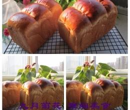 波兰种葡萄干吐司面包