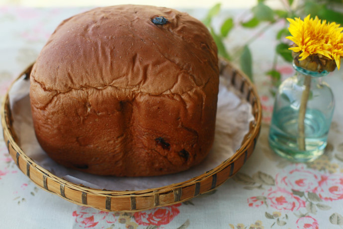 面包机也能做出柔软皮薄的面包--一键式巧克力果料面包