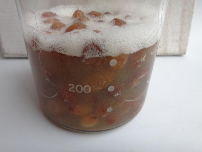 如何养天然酵母:葡萄干酵母喂养及原种制作