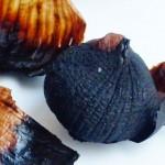養生食譜-黑蒜