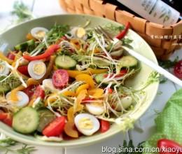 低脂开胃的有机油醋汁蔬菜沙拉