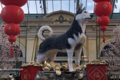 迎接中国狗年,拉斯维加斯吃喝记