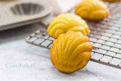 百香果贝壳海绵蛋糕
