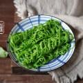 網紅菠菜網卷餅