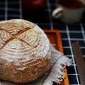 免揉麦香面包
