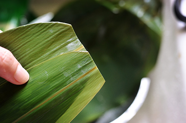 粽子的包法-红枣粽