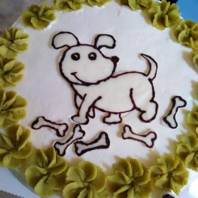 拯救抹面手残党的巧克力转印蛋糕美颜法
