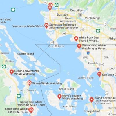 溫哥華島Day3-1.觀鯨.上篇.