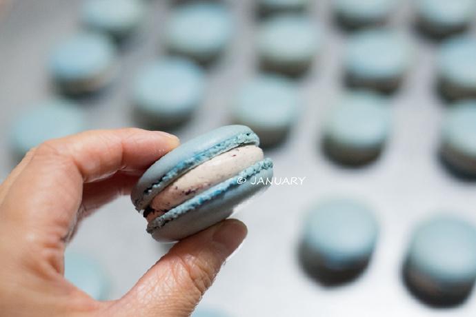 【蓝莓马卡龙】口感酸酸甜甜不腻人