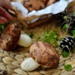 奶黄蘑菇包---童年美好记忆的小点心
