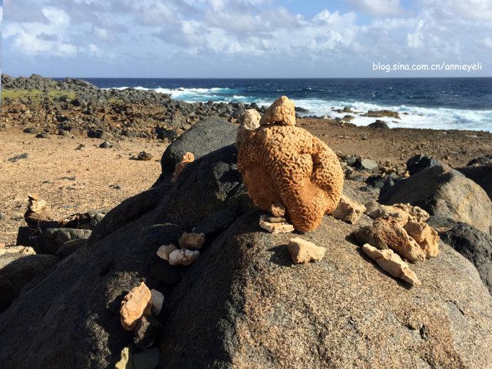 【阿鲁巴岛】青葱的腰果翘然自在