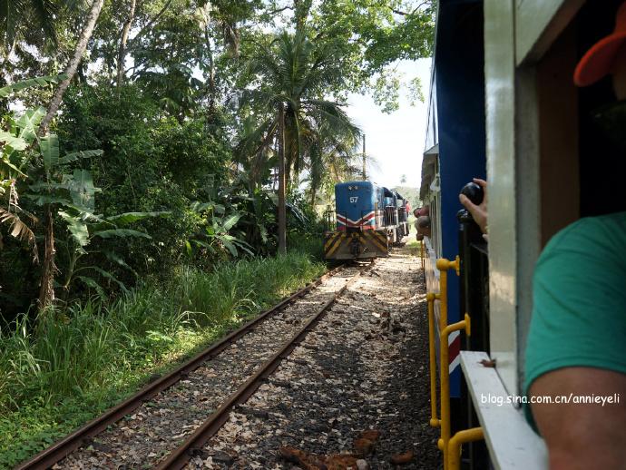 【哥斯达黎加】火车游香蕉种植园