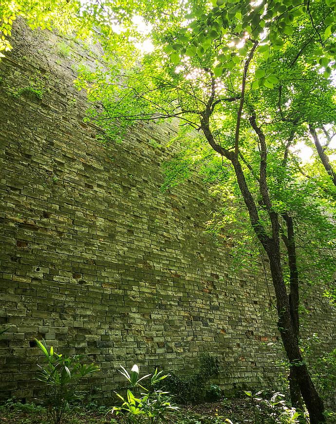"""【南京】明朝古城墙上惊现""""石钟乳"""",至今还是个谜?"""
